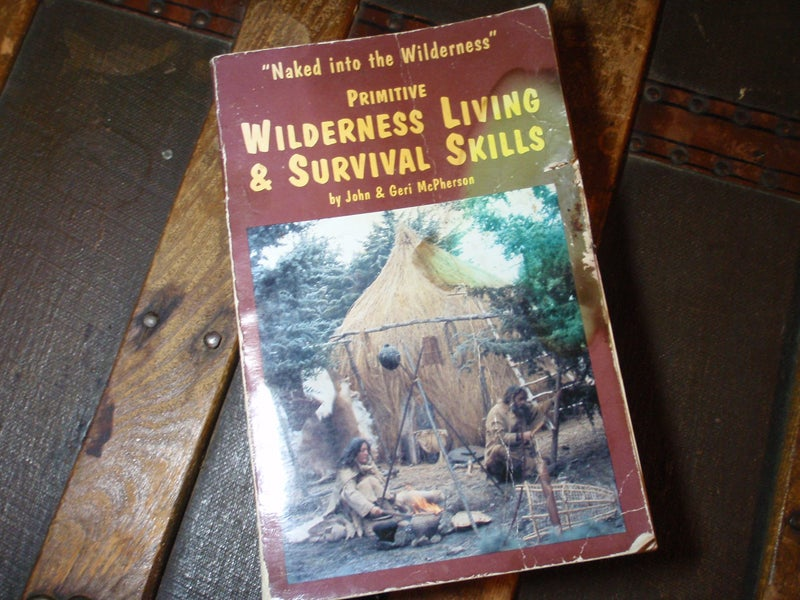 Naked Into The Wilderness book