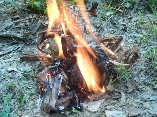 httpswww.outdoorlife.comsitesoutdoorlife.comfilesimport2014importBlogPostembedOLtinder_01.jpg