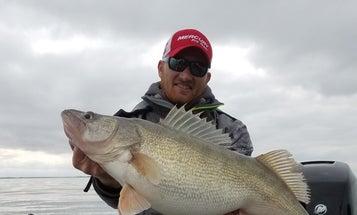 Lake Erie Walleye Fishing Set for Banner Year
