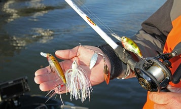 Bass Fishing: Timmy Horton's Tennessee River Hit-Makers