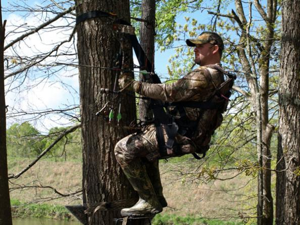 Guido's Web: Safest Treestand on the Market?