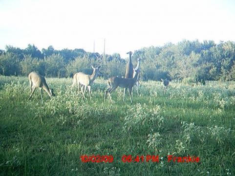 httpswww.outdoorlife.comsitesoutdoorlife.comfilesimport2014importImage2009photo6dreamspot_021.jpg