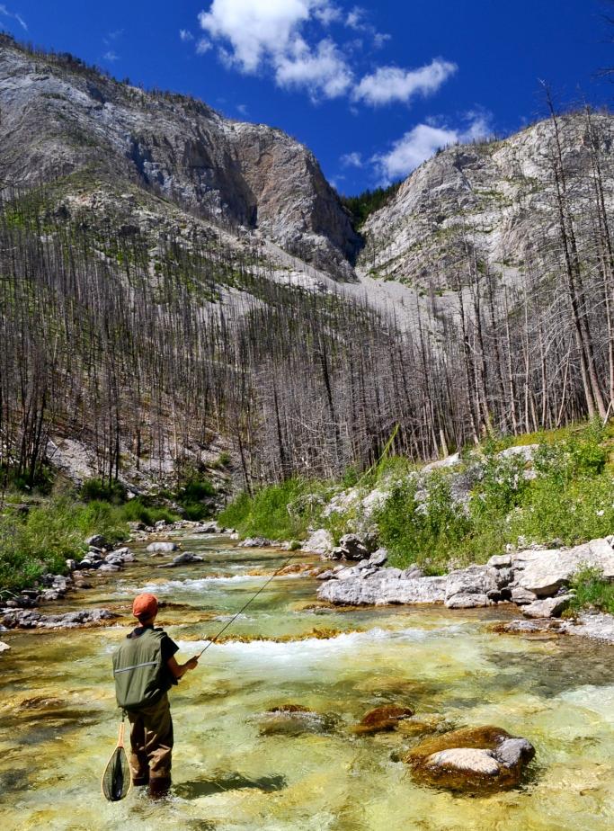 httpswww.outdoorlife.comsitesoutdoorlife.comfilesimport2015201505Joe-box-canyon-low-28329.png
