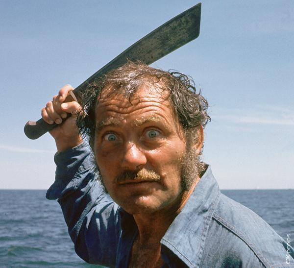 Searching For Quint