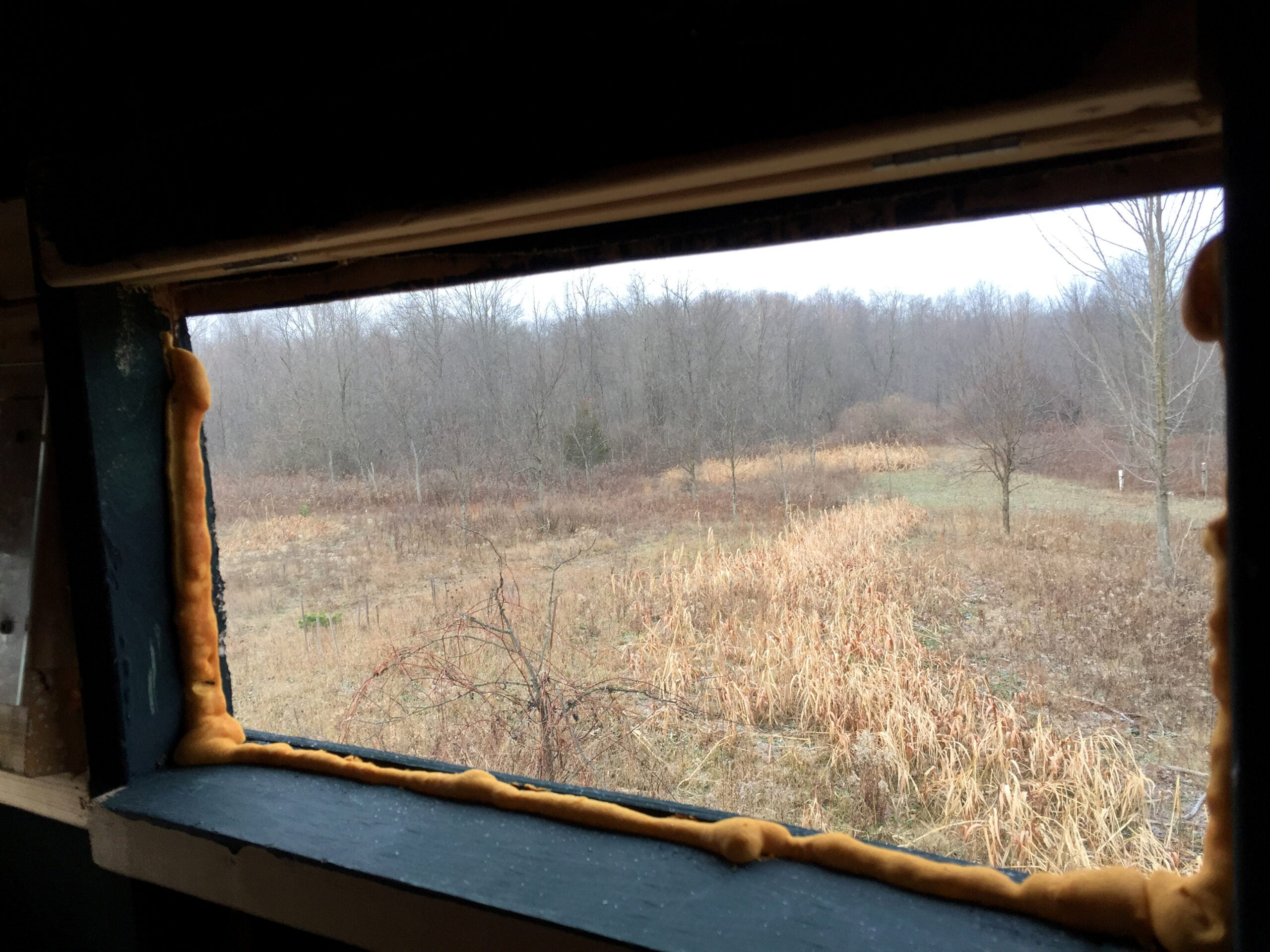 Micro Manager: How To Buy Your Own Hunting Land, Part 2