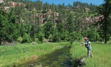 America's Great Trout Road Trip