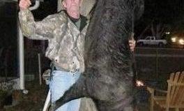 Florida Trapper Kills 400-Pound Hog