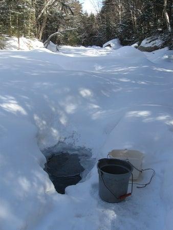httpswww.outdoorlife.comsitesoutdoorlife.comfilesimport2013images20110313-waterhole_0.jpg