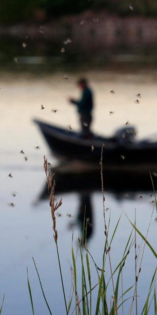 httpswww.outdoorlife.comsitesoutdoorlife.comfilesimport2014importImage2010photo30010OL0007.JPG