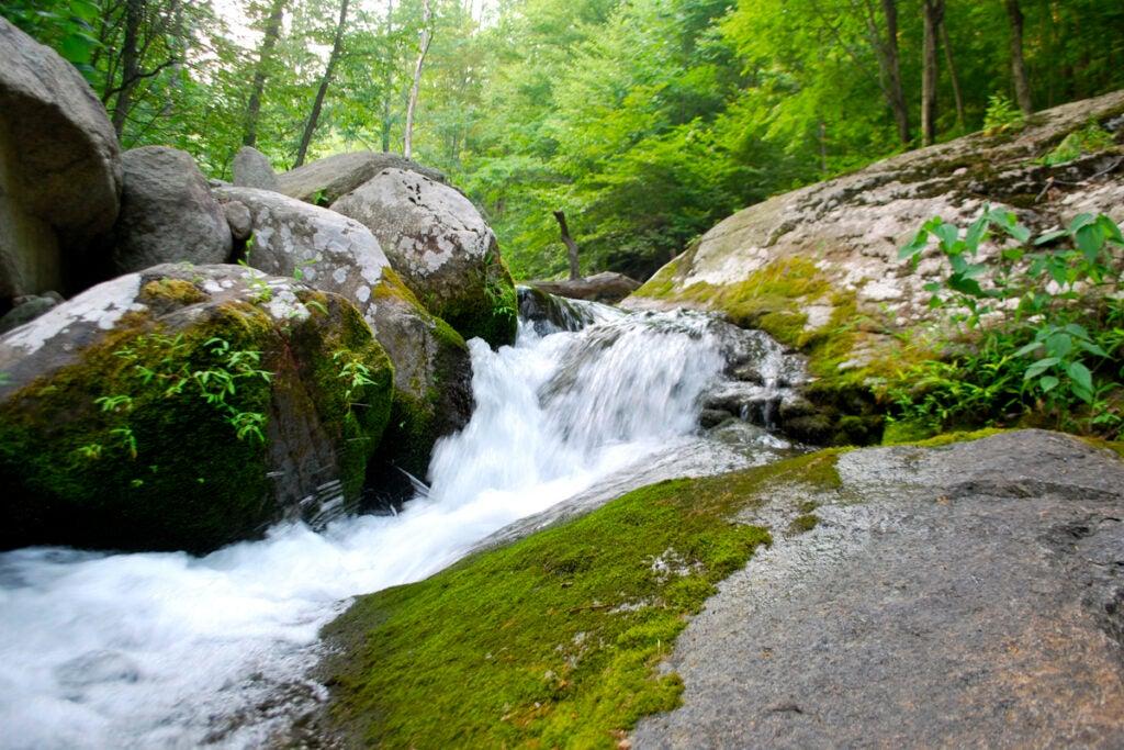 httpswww.outdoorlife.comsitesoutdoorlife.comfilesimport2013images201007slide15_4.jpg