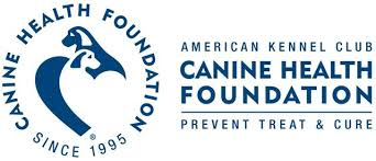 Hunting Dogs and the AKC Canine Health Foundation