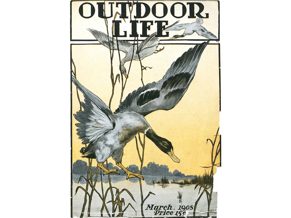 March 1908 cover of Outdoor Life