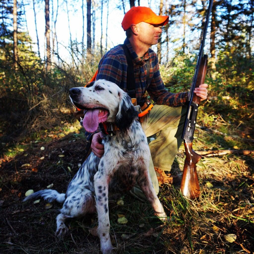 hunter and grouse hunting dog