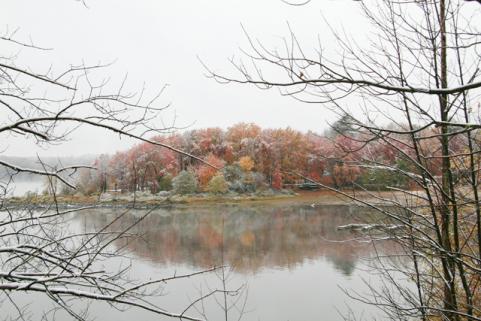 httpswww.outdoorlife.comsitesoutdoorlife.comfilesimport2014importImage2009photo7Decfoliage_66.jpg