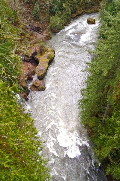 httpswww.outdoorlife.comsitesoutdoorlife.comfilesimport2014importImage2010photo1001321579slide1_12.jpg