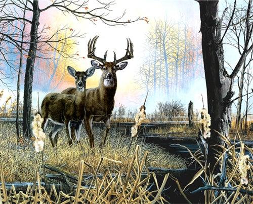 httpswww.outdoorlife.comsitesoutdoorlife.comfilesimport2014importImage2008legacyoutdoorlifedenault_paintings_SwampfireRevisited.jpg