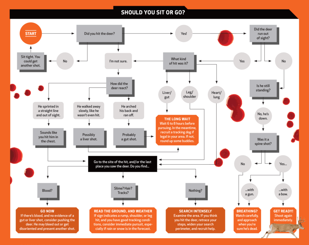Sit or Go Flow Chart