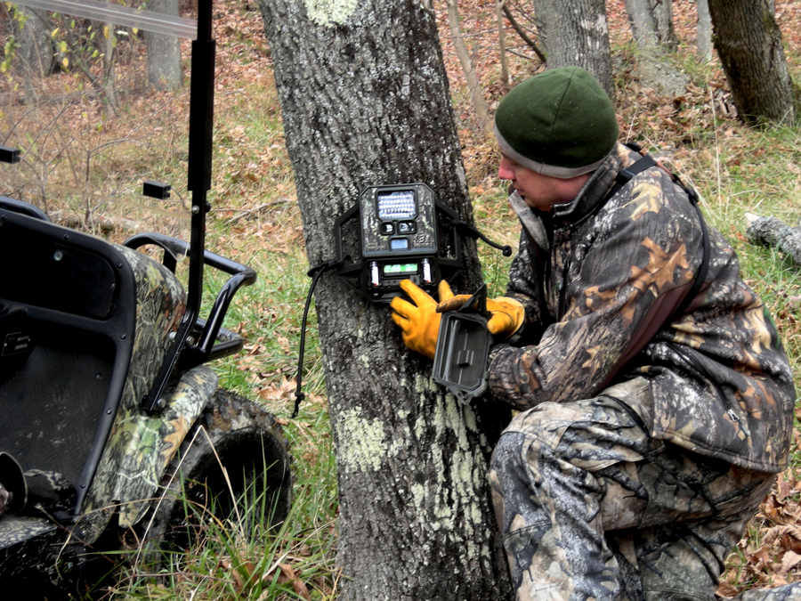Whitetail Deer: How To Set Up Trail Cameras