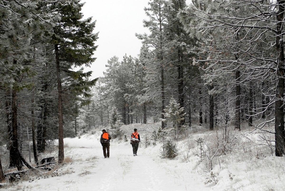 The End: Reflections on Deer Season