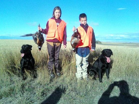 Gun Dog Tips: Early Season Birds
