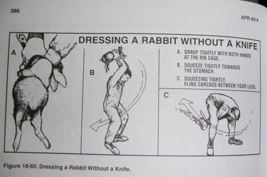 Tips from the Air Force: How to Field Dress a Rabbit Without a Knife