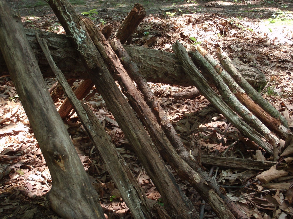 Step-By-Step on How to Build a Leaf Hut