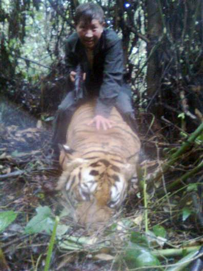 Tiger Poachers Busted in Thailand