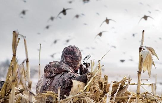 Waterfowl Hunting: What You Need to Know About Steel Shot