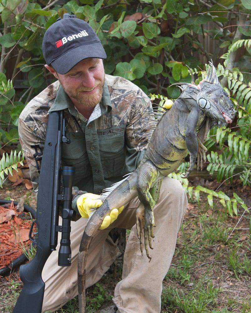 Invasion of the Iguana: Mankind Strikes Back