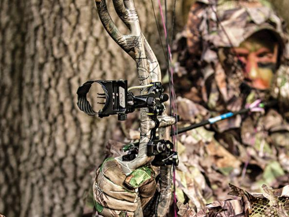 Best Bow Sights: Find the Right Sight for Your Hunting Style