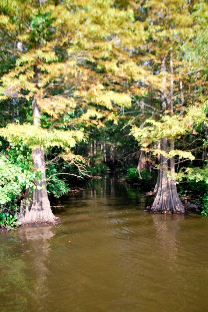 httpswww.outdoorlife.comsitesoutdoorlife.comfilesimport2013images201009slide22_3.jpg