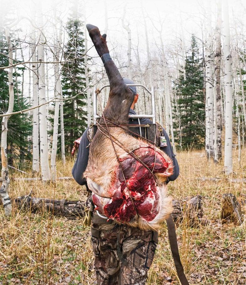 hunter elk haunch