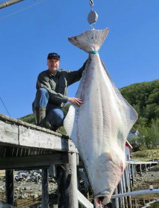 Angler Lands Huge 427-Pound Halibut Off Coast of Norway