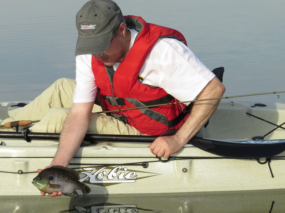 angler holding a bluegill