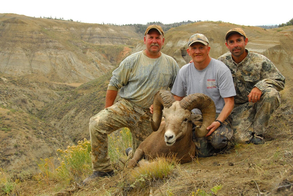bighorn ram from national monument