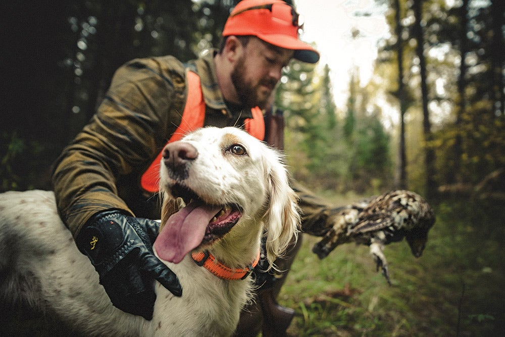 happy dog after hunting ruffed grouse