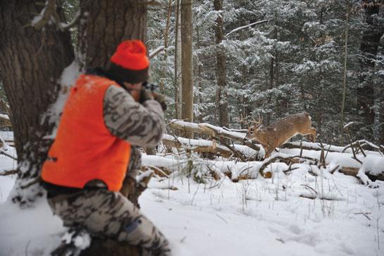 winter deer hunt