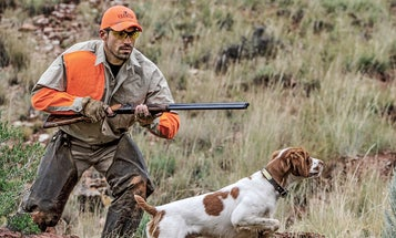 5 Tips for Shooting a Shotgun Better and Faster
