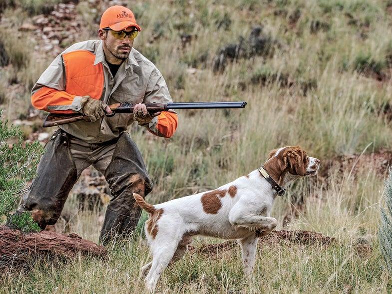 Hunter and hunting dog