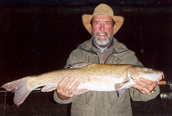httpswww.outdoorlife.comsitesoutdoorlife.comfilesimport2014importImage2010photo10013215792_barbel_-_35952.jpg