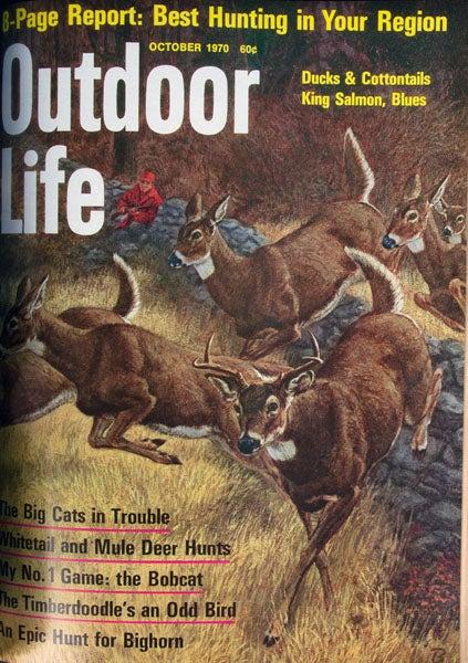 httpswww.outdoorlife.comsitesoutdoorlife.comfilesimport2013images2011071970_Oct_0.jpg