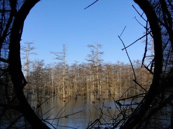httpswww.outdoorlife.comsitesoutdoorlife.comfilesimport2014importImage2010photo30010BD20.jpg
