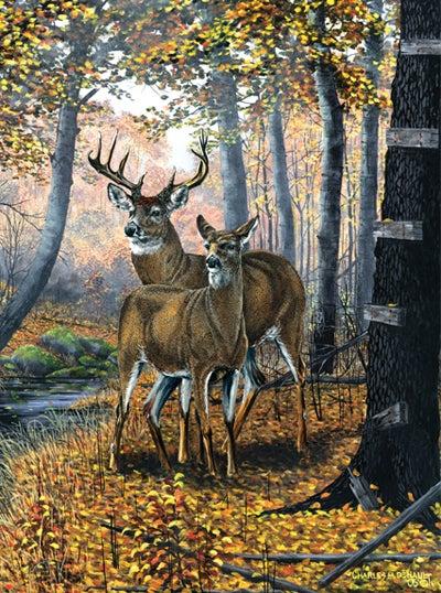 httpswww.outdoorlife.comsitesoutdoorlife.comfilesimport2014importImage2008legacyoutdoorlifedenault_paintings_SilentAlert.jpg