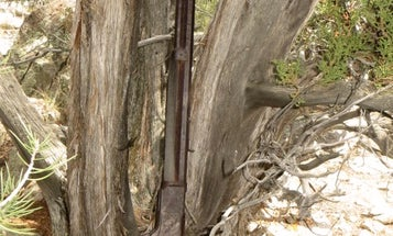 Gun of the Week: The Forgotten Winchester 1873 of Great Basin National Park