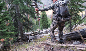 3 Smart Summer Archery Practice Tips for Fall Bowhunting Success
