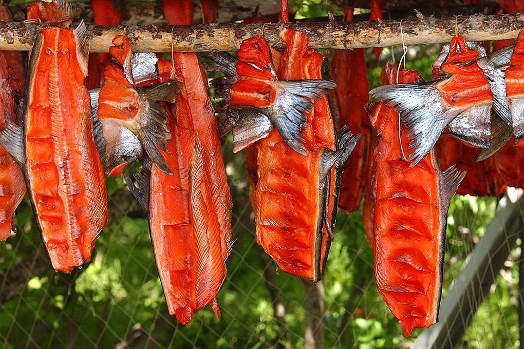 dried salmon fillets