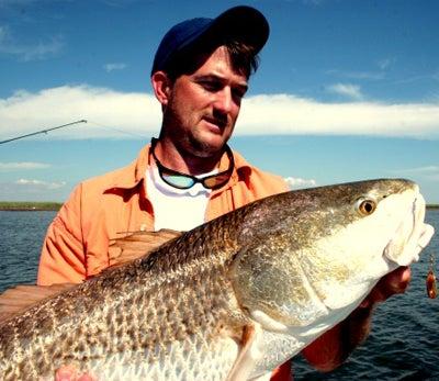 httpswww.outdoorlife.comsitesoutdoorlife.comfilesimport2014importImage2008legacyoutdoorlifebob_mcnally_redfish_13.jpg