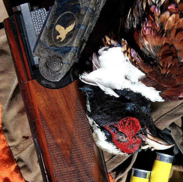 httpswww.outdoorlife.comsitesoutdoorlife.comfilesimport2014importImage2010photo6Pheasants.jpg