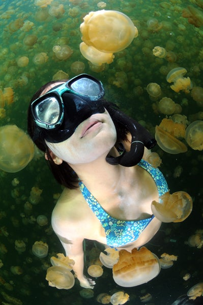 httpswww.outdoorlife.comsitesoutdoorlife.comfilesimport2014importImage2011photo100132157916_98.jpg