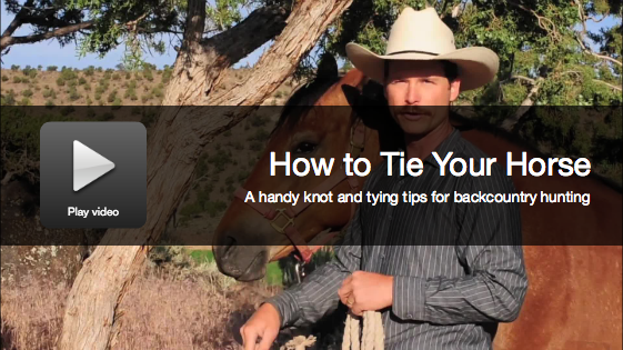Backcountry Hunting: How to Tie A Horse's Lead